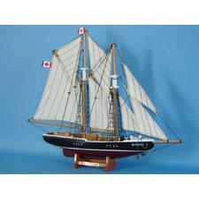 Bluenose Sailing Model Ship