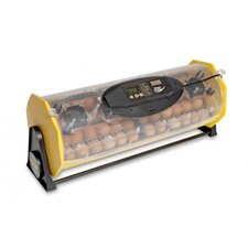 Octagon 40 Advance Automatic Egg Incubator
