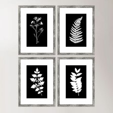 Impressions Framed Print Collection