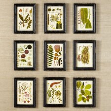 Floret Framed Prints (Set of 9)