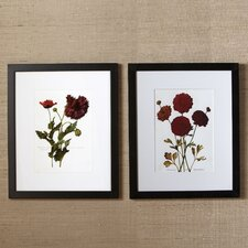 Sepal Framed Print Collection