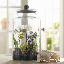 Faux Mixed Orchid Terrarium