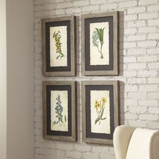Verdure Framed Print Collection