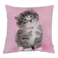 So Sweet Kitty Throw Pillow