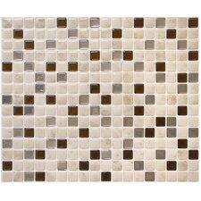 """Mosaïk 11.55"""" 9.65"""" Mosaic Tile in Minimo Cantera"""