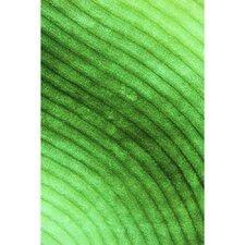 Shaggy 3D Green Area Rug