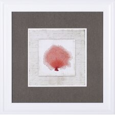 Coral Linen I Aimee Wilson Framed Painting Print