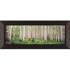 Site 43 by Susan Drinker Framed Photographic Print