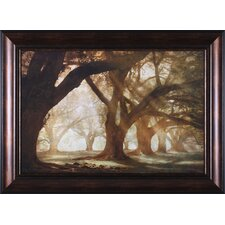 Oak Alley Morning Light by William Guion Framed Photographic Print