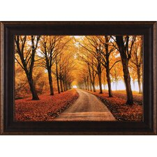 Well Traveled by Lars Van De Goor Framed Photographic Print