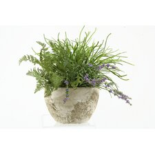 Pearl Grass & Forest Fern in Oval Cement Planter