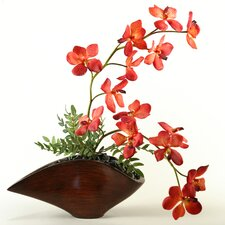 Vanda Orchids in Contemporary Resin Planter