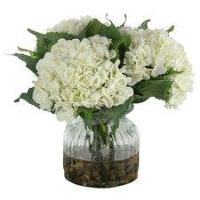 Hydrangeas in Ribbed Glass Vase