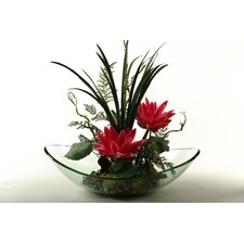 Water Lilies with Mixed Greenery in Glass Dish