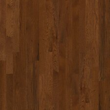 "Bellingham 3-1/4"" Solid White Oak Hardwood Flooring in Saddle"