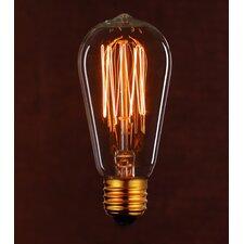 Vintage 25W Clear Light Bulb (Set of 2)