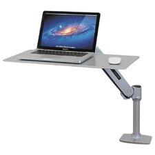WorkFit-P Sit-Stand Workstation Desk Mount