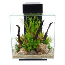 12 Gallon Fluval Edge Aquarium Kit