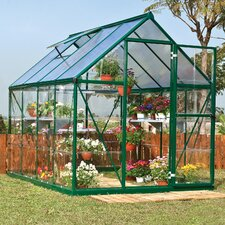 Hybrid 6 Ft. W x 8 Ft. D Polycarbonate Greenhouse