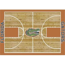 NCAA Court Florida Gators Novelty Rug