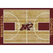 College Court NCAA Minnesota Novelty Rug