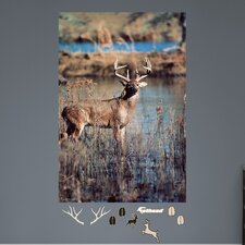 White Tail Buck Big Wall Mural