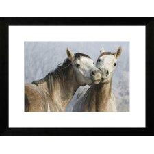 Funny Horses by New Era Publishing Framed Paper Print Art