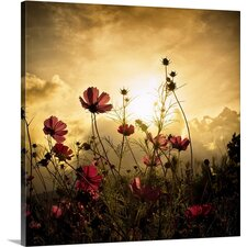 Watching the Sun by Christian Marcel Photographic Print on Canvas