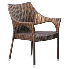Norm Outdoor Wicker Arm Chair (Set of 2)