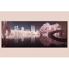 Central Park Photographic Print on Canvas