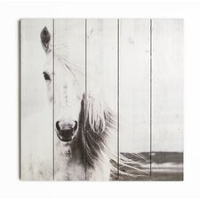 Summer 2015 Horse Photographic Print on wrapped Canvas