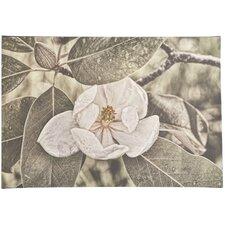 'White Magnolia' Photographic Print on Canvas