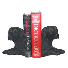 Lab Book Ends (Set of 2)