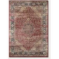 Zahara Persian Vase Red/Black Area Rug