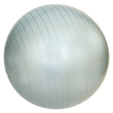 "22"" Professional Exercise Ball"