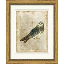 Antiquarian Birds I by Vision Studio Framed Graphic Art
