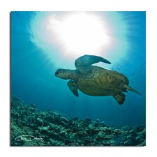 'Maui Turtle Blue' by Chris Doherty Oversized Wrapped Canvas Wall Art