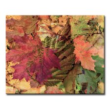 Fall Ink XXV Graphic Art on Wrapped Canvas