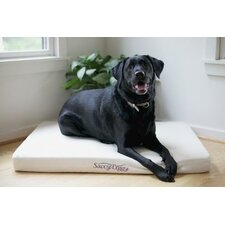 Doggy Bed with Formed Latex Core