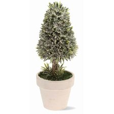 """9.5"""" Cone Topiary in Pot Holiday Accent"""