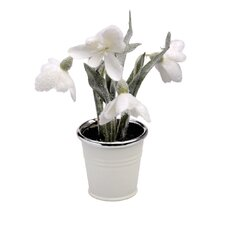 Snowdrop Topiary Pot