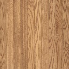 "Bristol 3-1/4"" Solid Red Oak Hardwood Flooring in Natural"