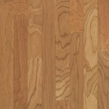 "Turlington 3"" Engineered Cherry Hardwood Flooring in Natural"