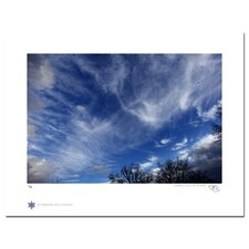 Limited Edition 'Birds and the Blue Sky 01' by Jon Bidwell Photographic Print