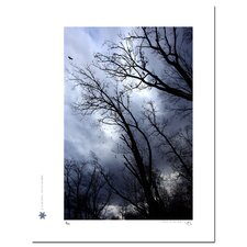 Limited Edition 'Birds and the Blue Sky 04' by Jon Bidwell Photographic Print