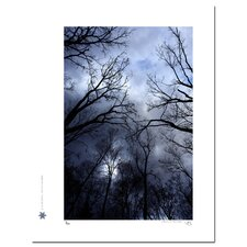 Limited Edition 'Birds and the Blue Sky 03' by Jon Bidwell Photographic Print