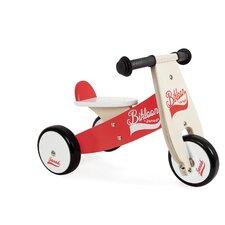 Little Ride-on Bikloon