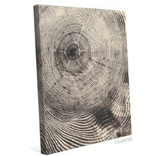 Wood Grain Texture Graphic Art on Wrapped Canvas