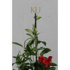University of Kansas Collegiate Logo Plant Stake