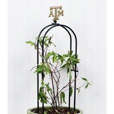 NCAA Tabletop Plant Arbor